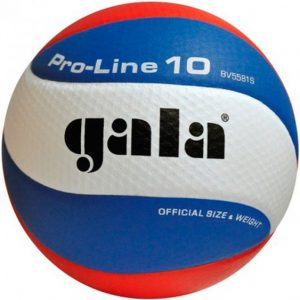 Eredivisie volleybal Gala pro-line 5591S10 dimple
